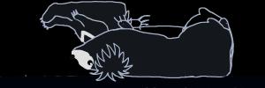 ナマケグマの寝姿イラスト